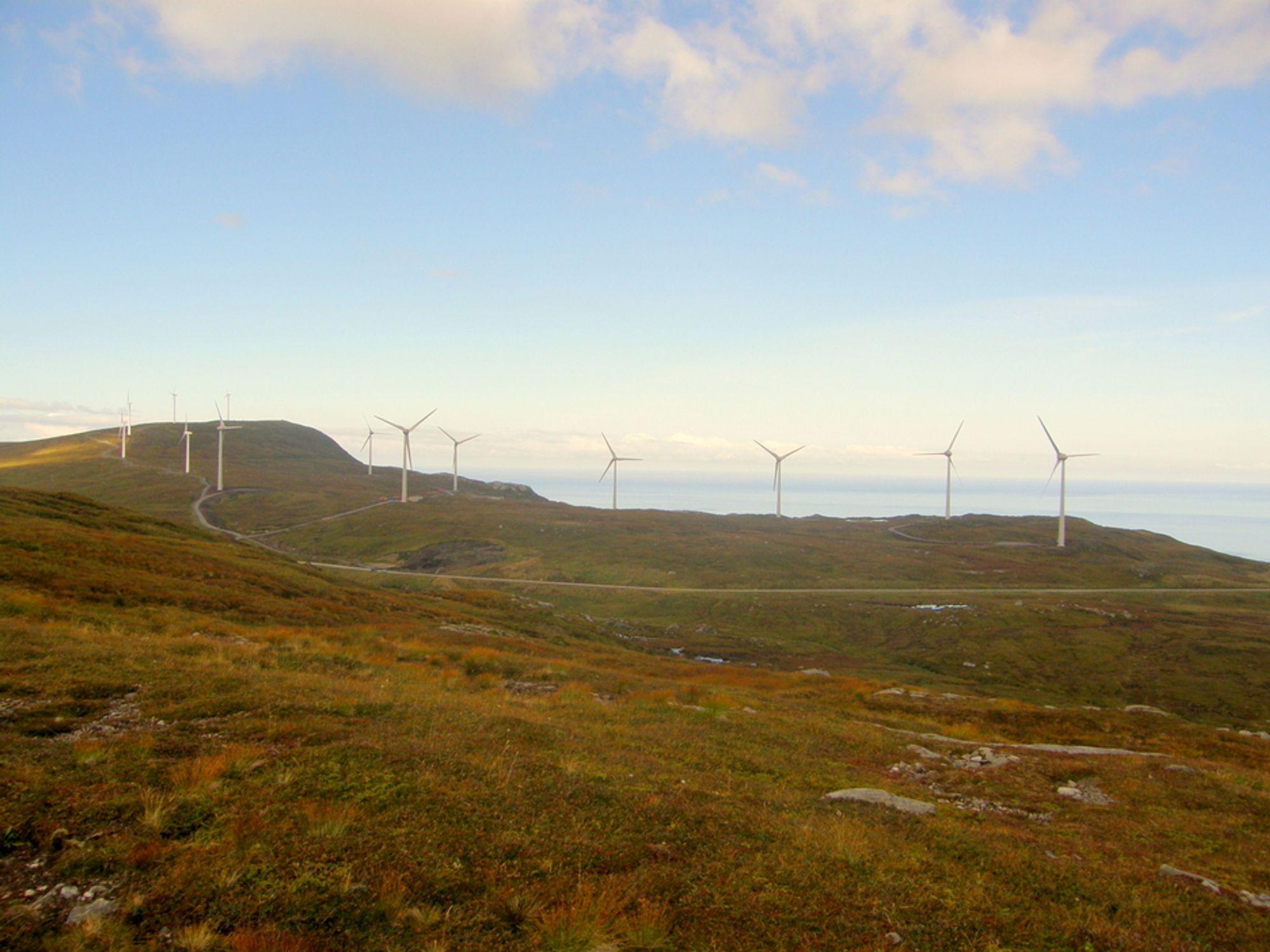 RADARVARSLING: Radarvarsling ved vindparker kan bli viktig i fremtiden, tror Kvalheim Krafts administrerende direktør Olav Rommetveit.