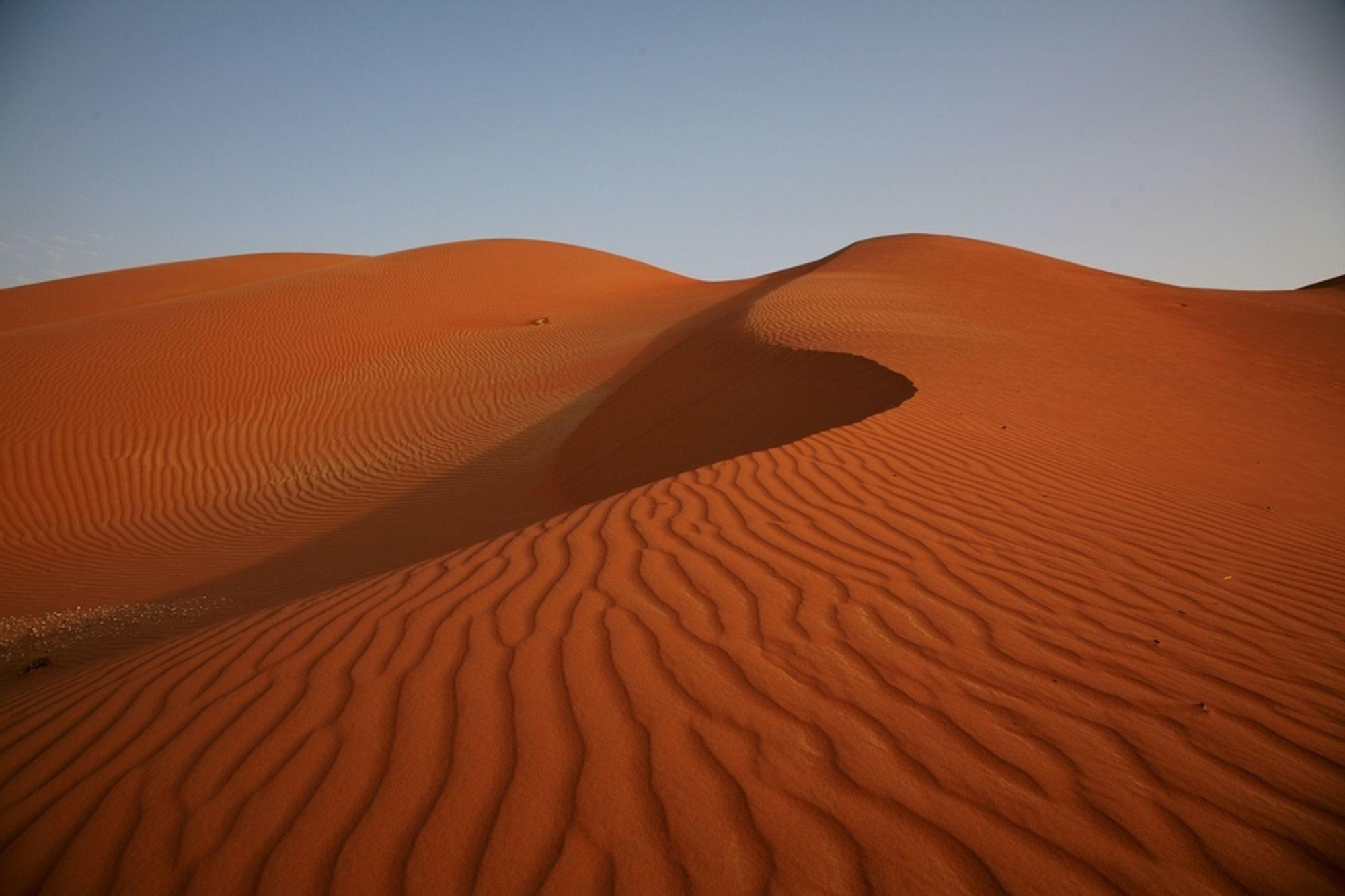 MANGLER ENERGI: Trøbbel i Nord-Afrika og Midtøsten gir utfordringer for mange land. Hele 122 land har nå høy risiko for energimangel, ifølge risikoanalytikerne i selskapet Maplecroft. Bildet er fra den saudiske ørkenen, hvor en stor andel av verdens oljeproduksjon skjer.