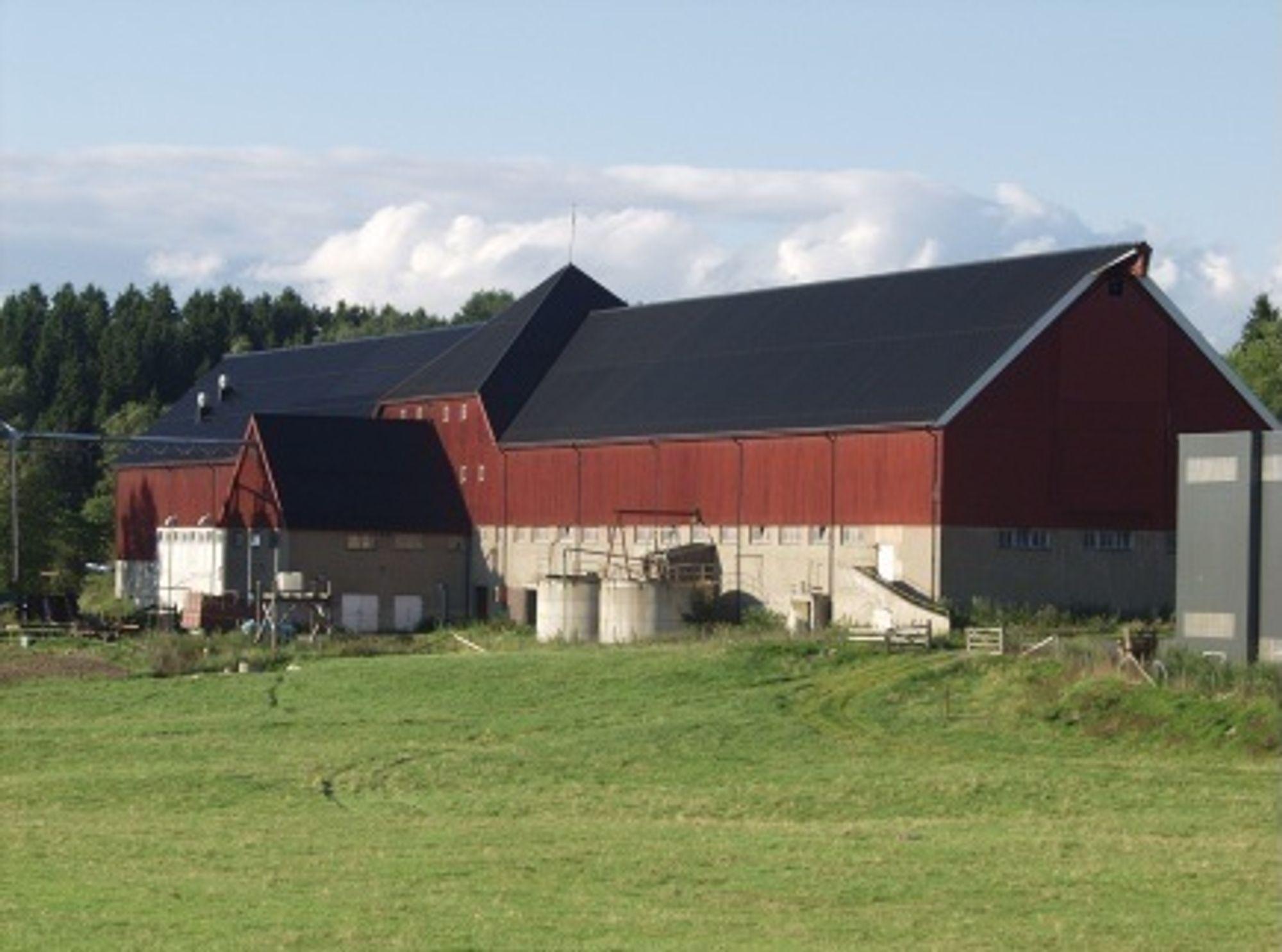 FOR GAMMELT: Dagens driftsbygning for Senter for husdyrforsøk må vike plassen for et nytt. Det blir en arkitektonisk og ingeniørmessig utfordring.
