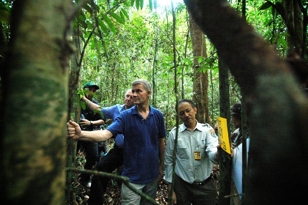 Miljø- og utviklingsminister Erik Solheim besøker Sentral-Kalimantan i Indonesia. Slike skoger kan bli en del av et fremtidig kvotemarked.