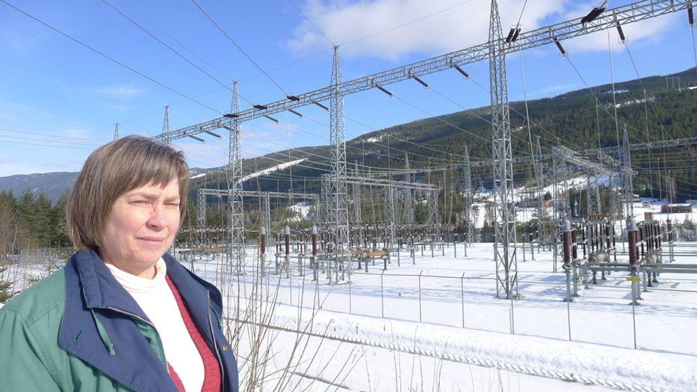 KRITISK: Ordfører i Nes kommune, Gerd Eli Berge er ikke tilfreds med at verdiene som skapes i Hallingdal stort sette havner i hovedstaden.