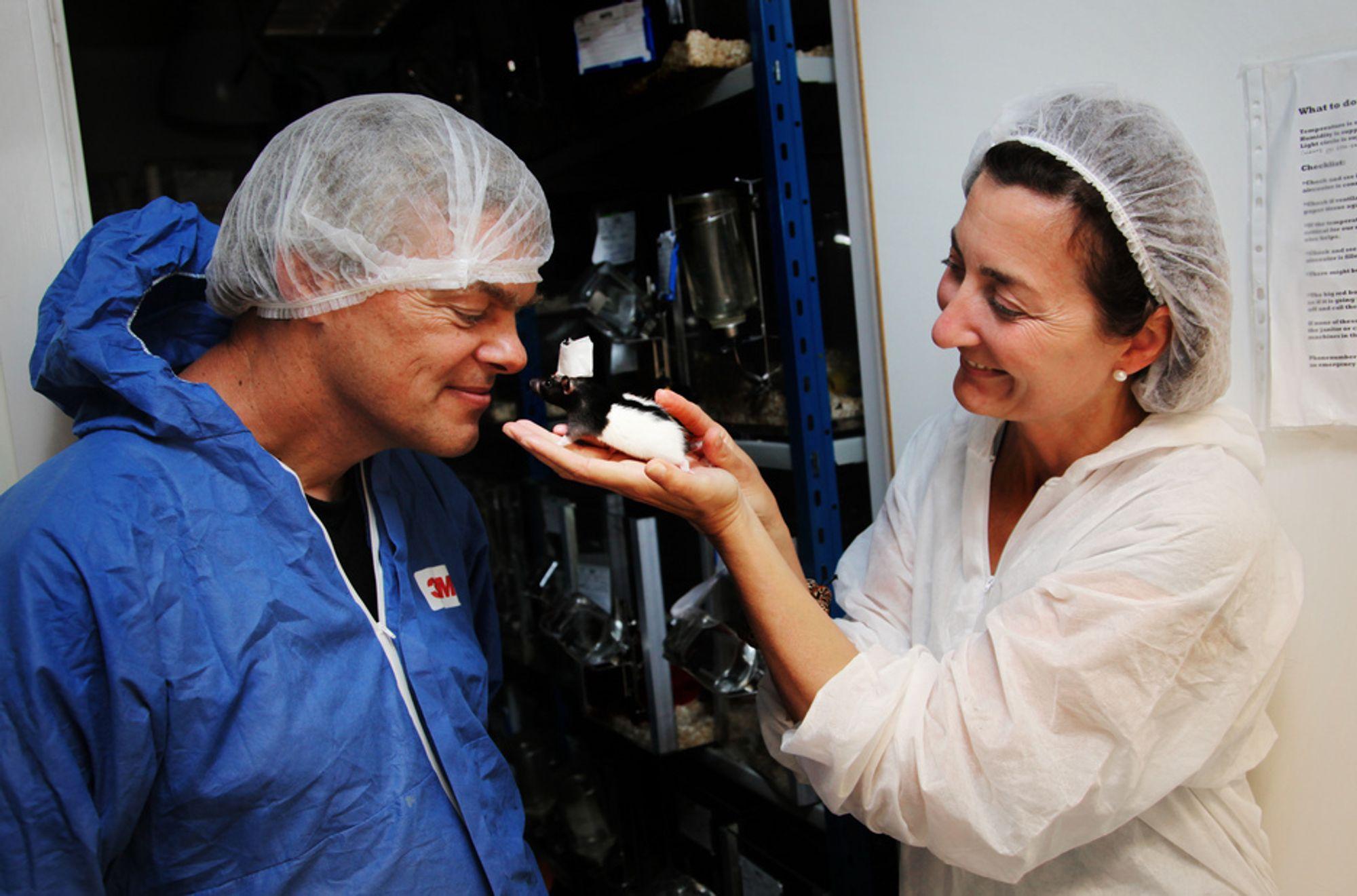 Edvard og May-Britt Moser har funnet fartsceller i hjernen.
