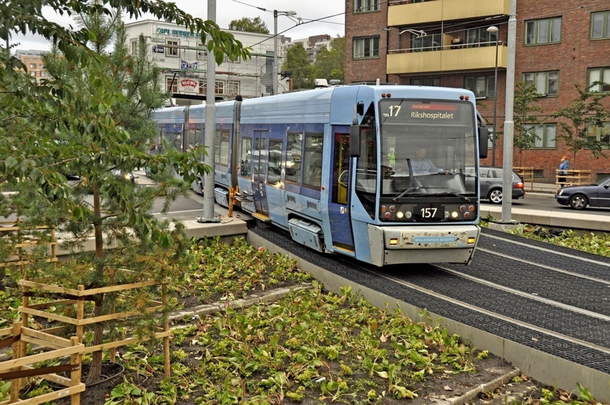 Buss nr. 31 kutter hjørnet i firkantkjøringen. Det tok tid før trafikantene skjønte at de kunne gjøre det. Nå flyter trafikken mye bedre.