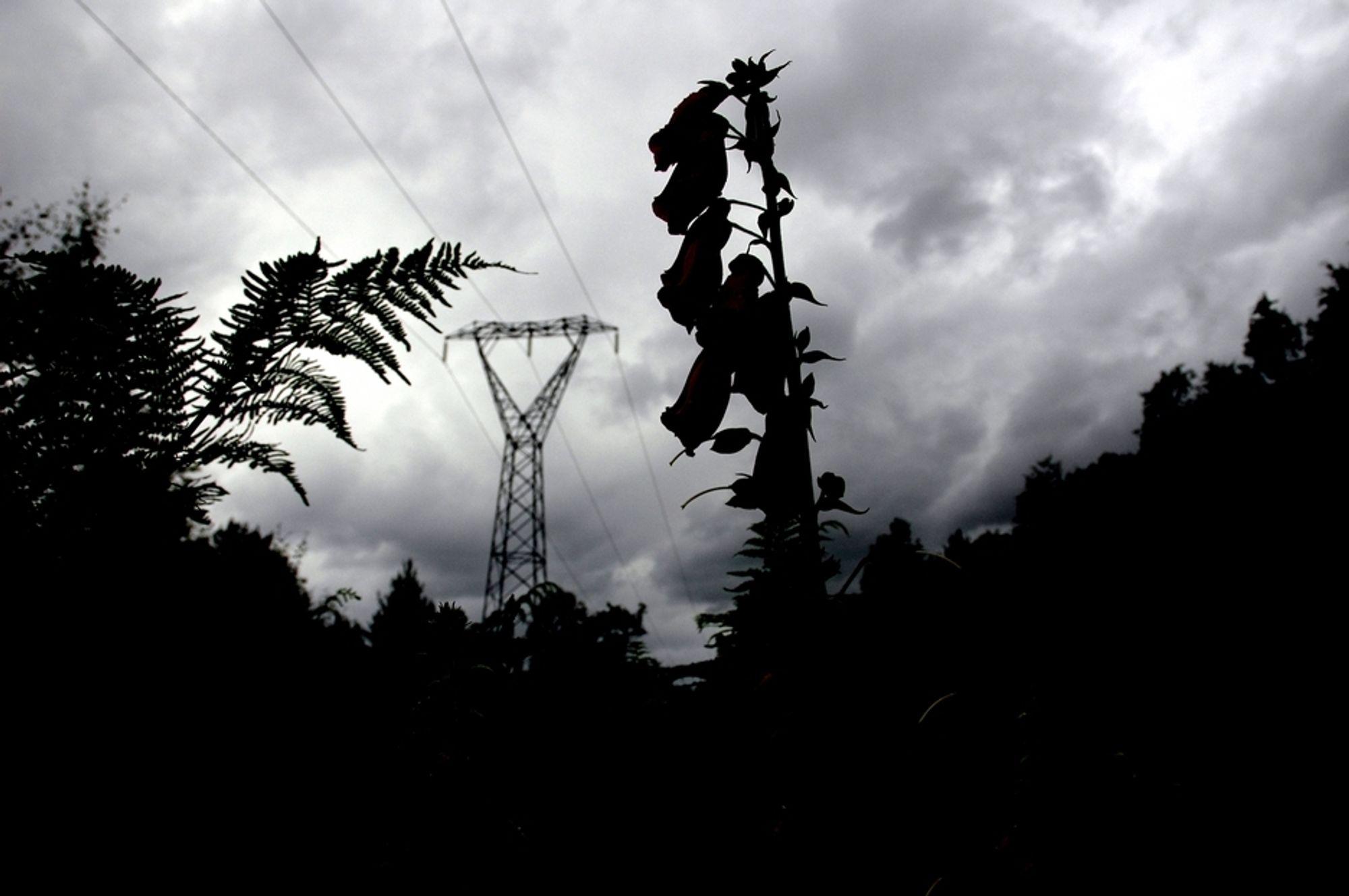 FJERNES IKKE: Disse kraftlinjene mellom Moskog og Grov i Sogn og Fjordane blir stående inntil videre. I dag vedtok regjeringen at 134 kilometer av 280 kilometer kraftlinje mellom Sør- og Midt-Norge skal på begynnes. Regjeringen avgjør klagene på resten av strekningen i løpet av 2011.