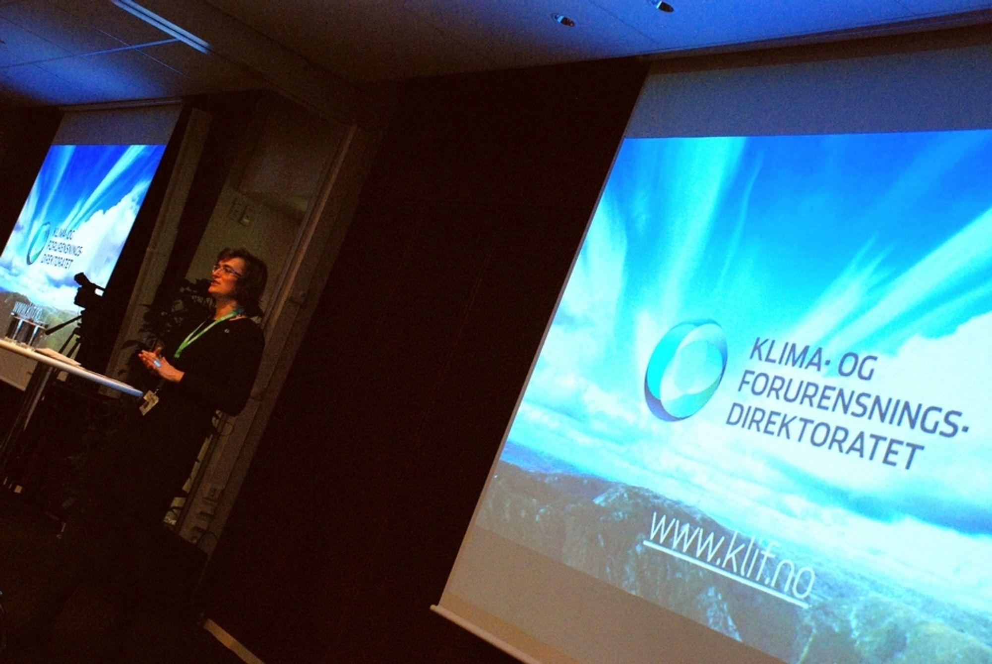 VIL MASE: - Klif bør få en vedvarende rolle som kunnskapsbasert masekråke, sier klimadirektør Ellen Hambro. Det nye klimadirektoratet blir statens fremste rådgiver i klimaspørsmål.