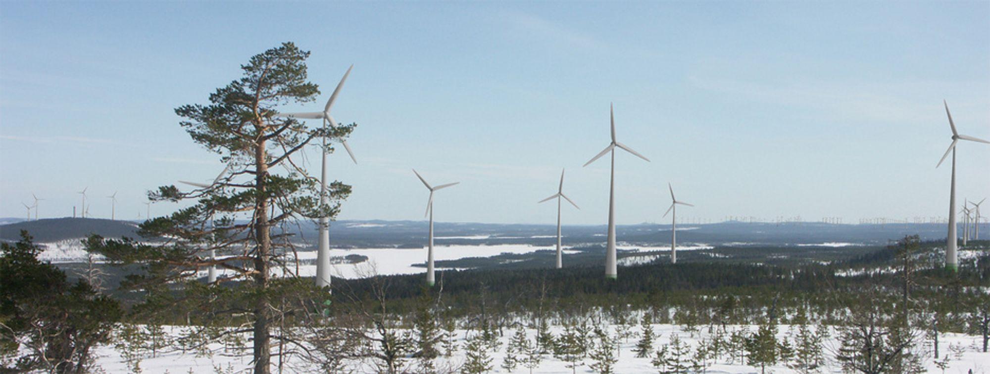 GLESBYGDEN: Landskapene i Norrbotten er småkupert uten store variasjoner og er velegnet for store vindparkutbygginger. Her fra Hästberget i Markbygden.