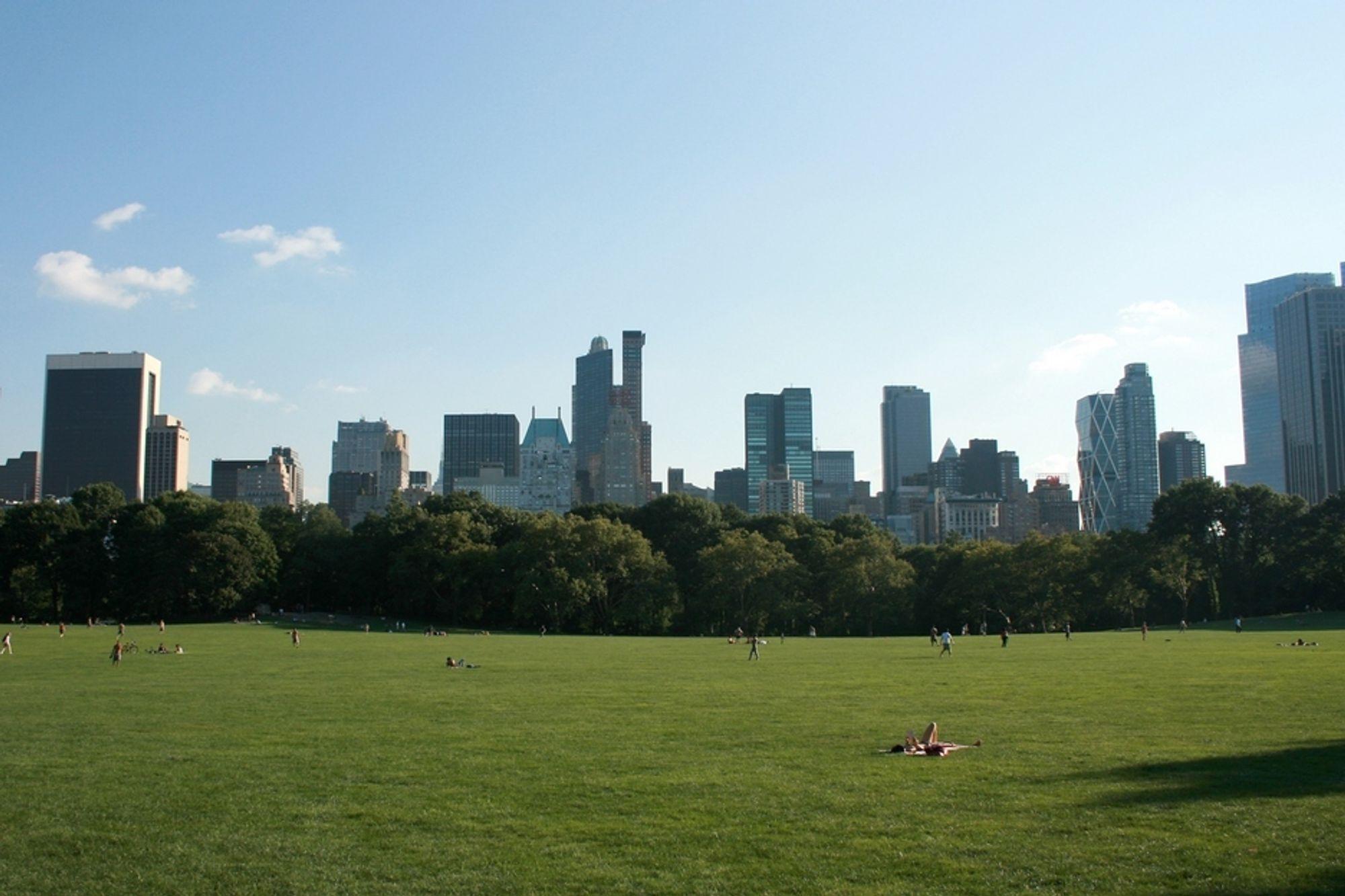 TVILER: Rundt halvparten av alle amerikanere mener bekymringen for klimaendringer er overdrevet. Illustrasjonsfoto fra Central Park, New York.