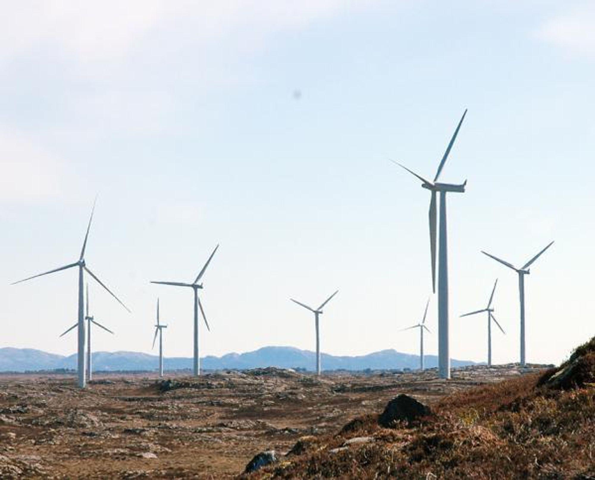 NVE har hendene fulle med vindkraftsøknader- og meldinger i Rogaland og Vest-Agder.