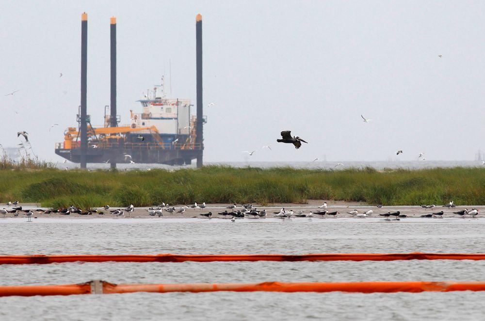 En pelikan på vingene forbi en boreplattform ved Breton Island i den amerikanske delstaten Louisiana, der lenser er lagt ut for å beskytte mot oljeutslippet i Mexico-golfen.
