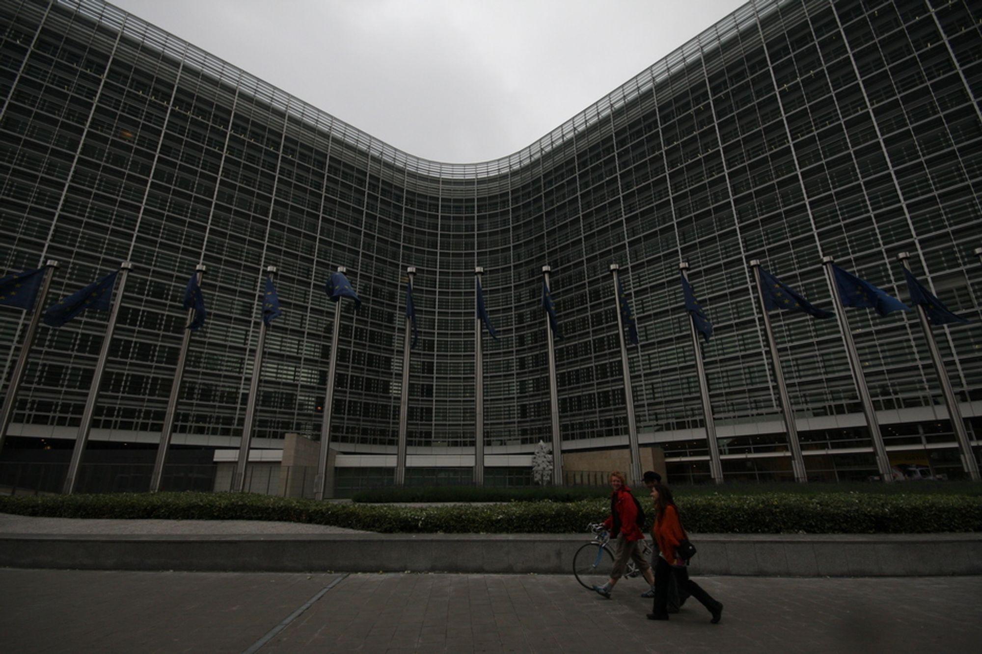 UTVEI: En rekke forpliktende it-posjekter skal skape etterspørsel på tvers av grensene og få europere ut av ledighetskøen.