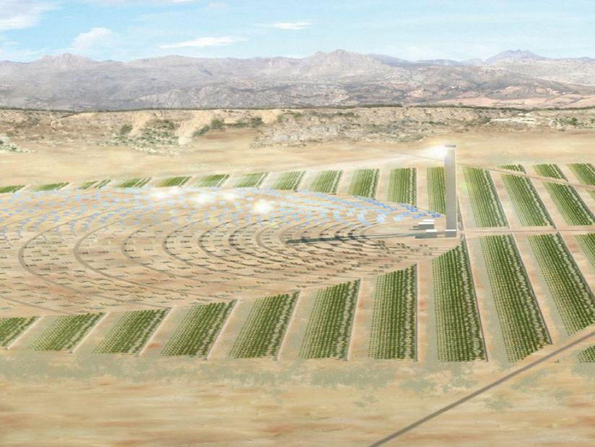 SOLENERGI: Slik ser Bellona for seg at Sahara Forest project kan se ut. Prosjektet skaper energi ved konsentrert solkraft. Dermed kan man hente sjøvann til avsalting og skape en grønn oase hvor man dyrker mat og alger til biodrivstoff, samt planter trær i omgivelsene.
