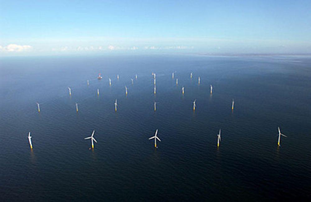 NYTT: Havvind er ett eksempel på grønn energi som Reinert mener vi bør satse mye mer på.