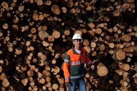 Södra Cells tømmerterminal på Lierstranda i Lier kommune utenfor Drammen. Besøkt 2. september 2010. Södras leieavtale med Eidos eiendomsutvikling løper til 2029. Seksjonssjef Per Einar Floberg.