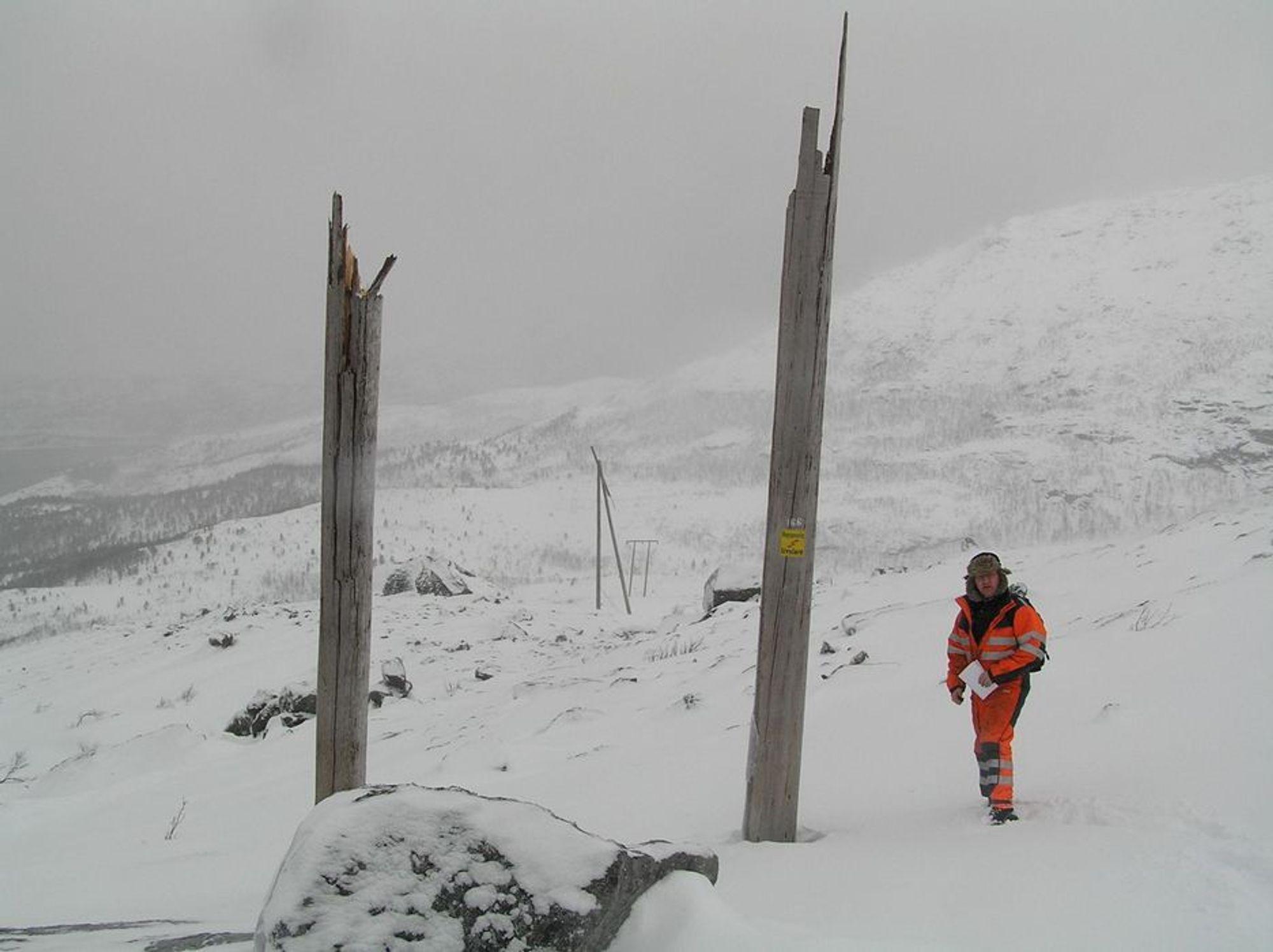 MÅ PUNGE UT: Nord-Salten Kraftlag oppfylte ikke sine forpliktelser til å vedlikeholde en kraftlinje de hadde konsesjon for, slår NVE fast.