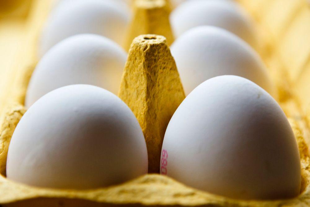 CO2LUMBI-EGG: Indiske forskere har oppdaget at filmen innenfor eggeskallet kan lagre syv ganger egen vekt i CO2.