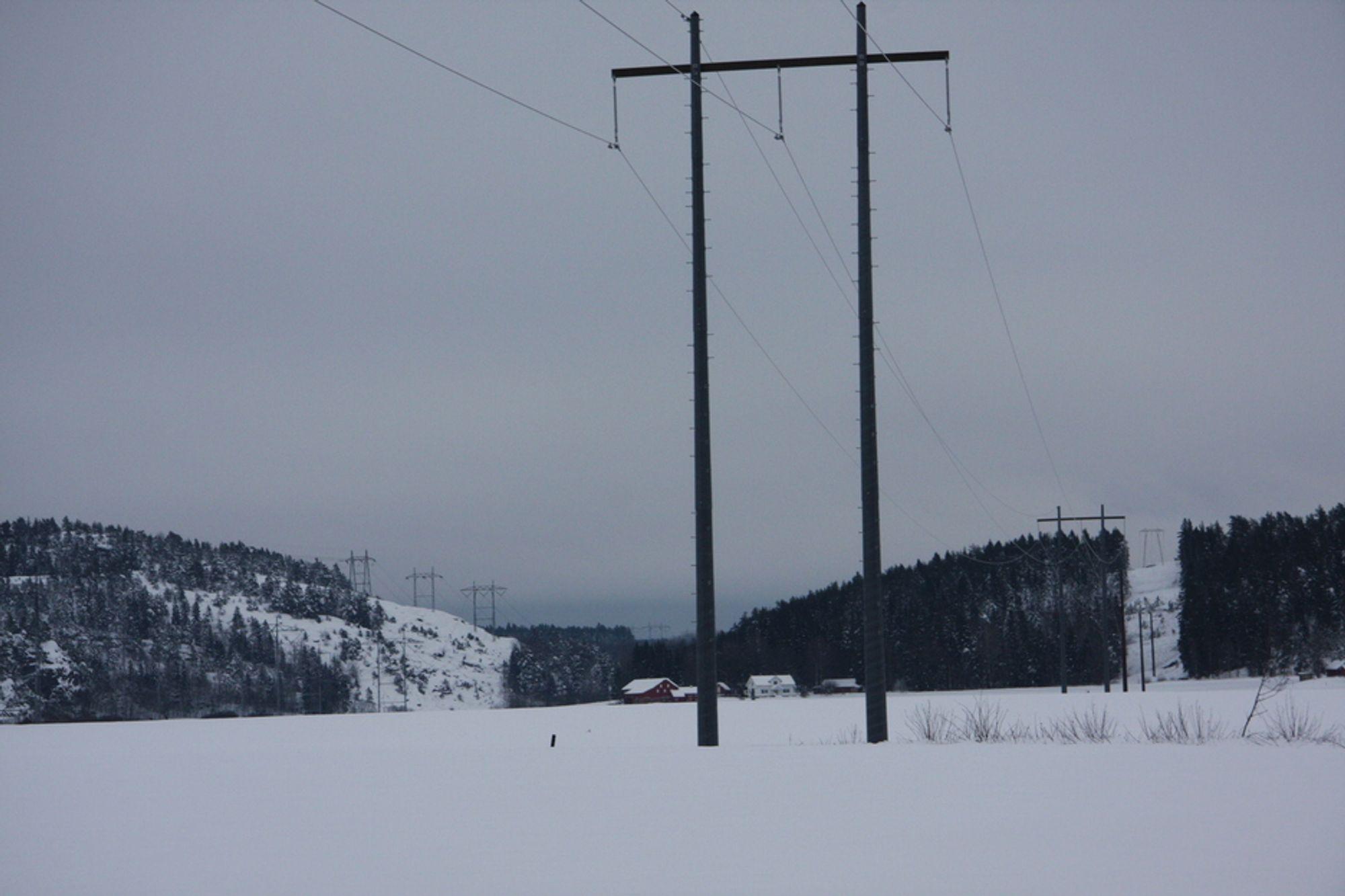 FORTSATT LOVLIG: EU vil ikke forby kreosotimpregnerte trestolper, men forslaget vil nok dukke opp igjen. Energi Norge anbefaler nå energiselskapene til å prøve nye stolper. Dette er en komposittmast.