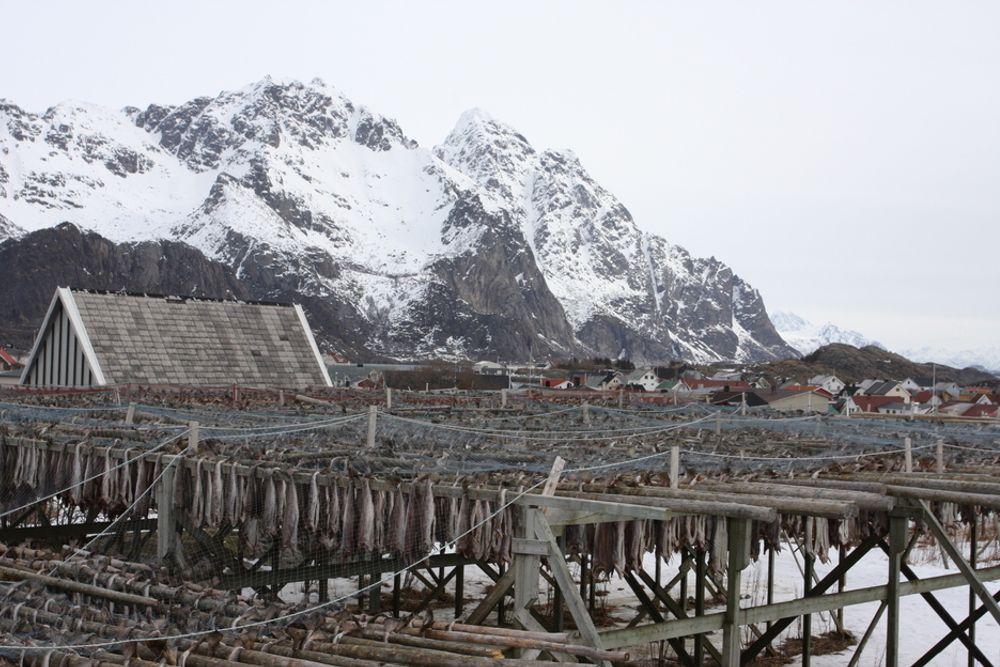 VERN LOFOTEN: For oljeselskapene er Lofoten minst verdt av de aktuelle utbyggingsområdene. For de som lever der, enten de er fiskere eller turister, er det motsatt.