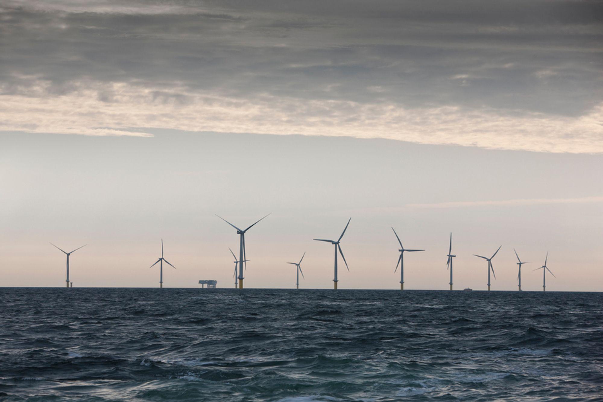 GAV NEGATIVE PRISER: Stor produksjon av vindkraft bidro til at energibransjen i Danmark måtte betale for å levere strøm i noen timer i julen. Dette er danske Horns Rev 2, verdens største havvindpark på 209 MW. Målet med negative priser er å få justert strømproduksjonen etter forbruket.