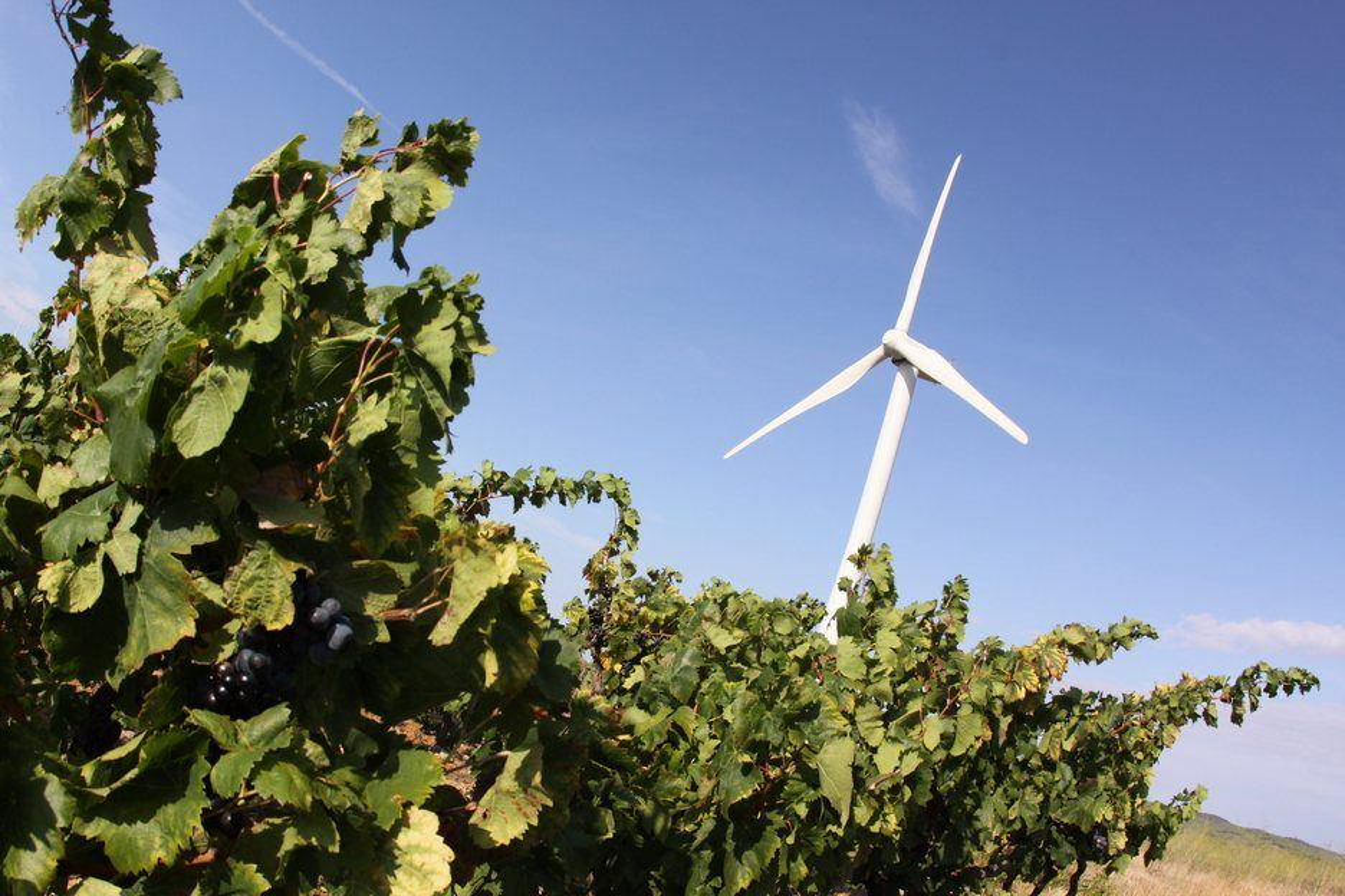 VIND: Svenske Energimyndigheten mener at en stor del av den nye fornybare kraften i Sverige vil komme fra landbasert vindkraft og er opptatt av å forhindre flaskehalser