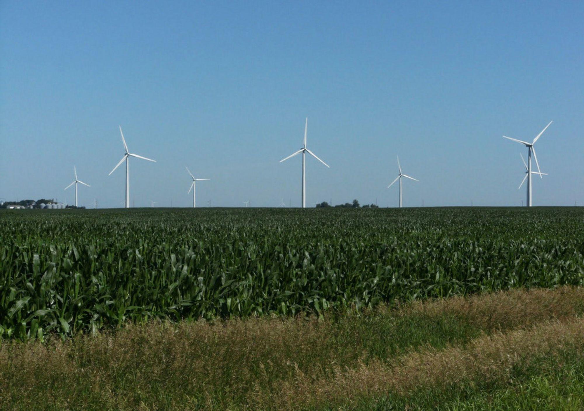 Fra denne vindparken i Iowa kjøper Google 114 MW i 20 år fremover.