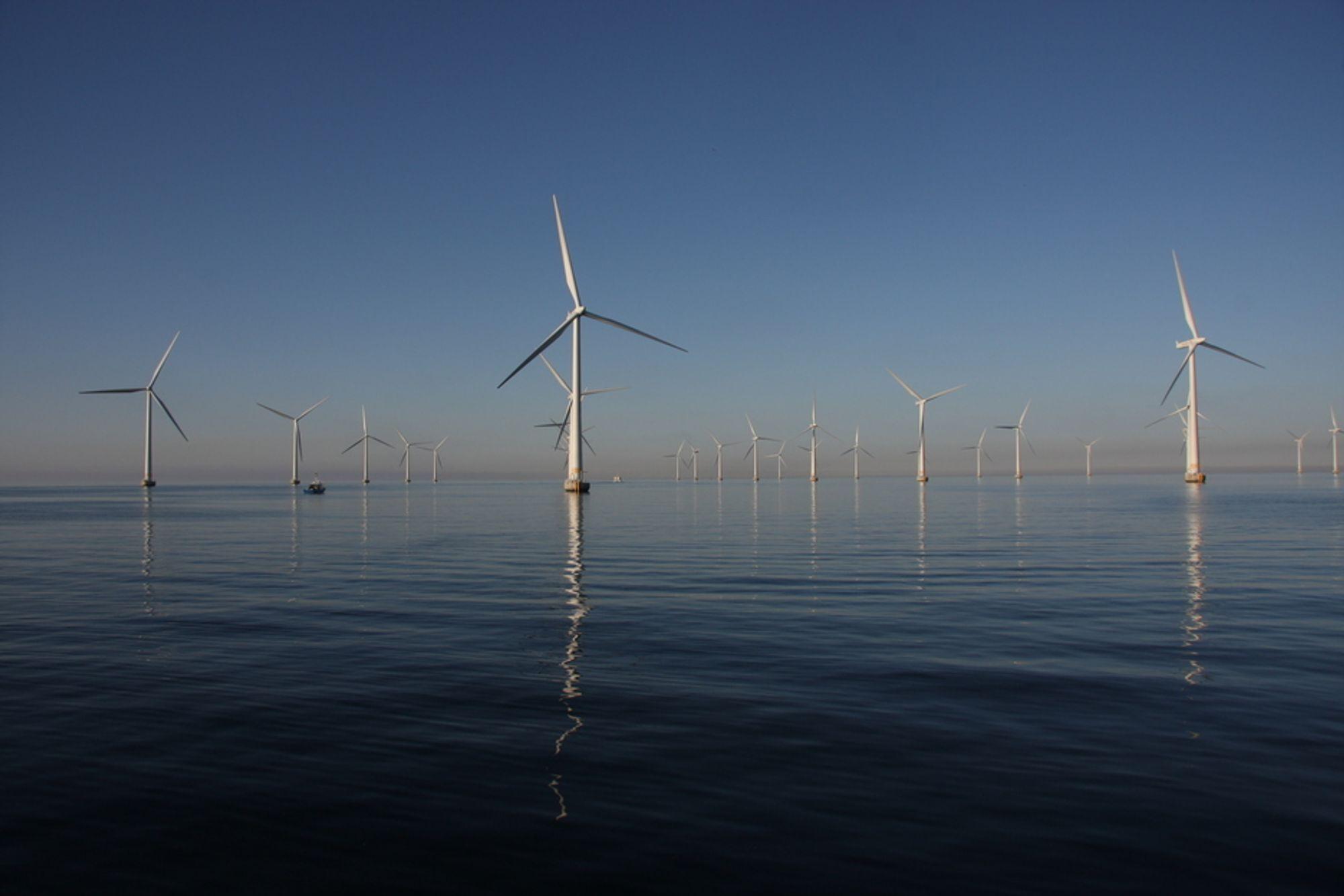 STORE MENGDER HAVVIND: Britene planlegger å bygge ut 33 000 MW havvind innen 2020. I Norge er det ingen planer om havvindmøller, men vi har noe over 400 MW på land. Bildet er fra svenske Lillgrund utenfor Malmø.