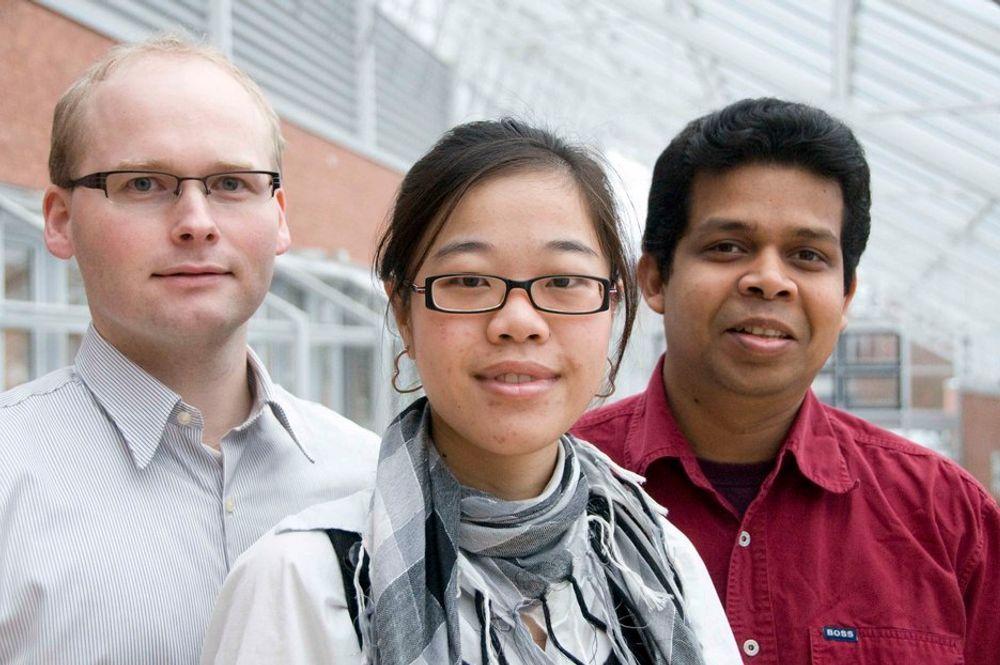 PhD: Håkon Viumdal fra Norge, Jingyi Han fra Kina og Deshai Botheju fra Sri Lanka er blant dagens 34 doktorgradsstipendiater i Porsgrunn.