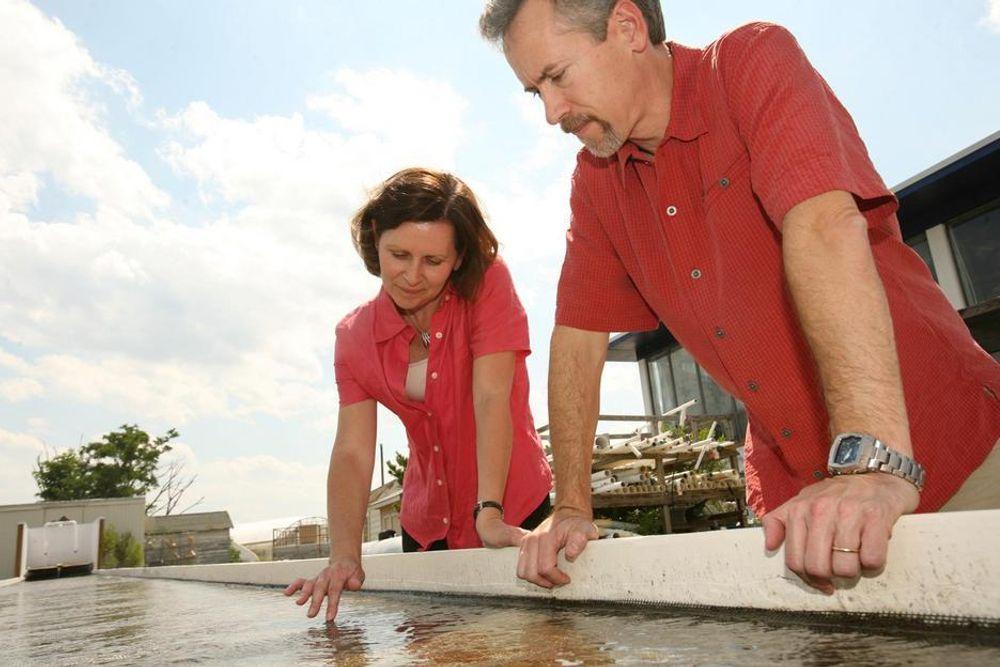 ALGEMEMBRAN: Professorene Elizabeth Canuel og Emmett Duffy ved Virginia Institute of Marine Science leder prosjektet.