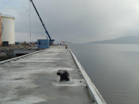 NY KAI: BioWood Norway har etablert en ny  dypvannskai for å kunne ta i mot de store båtene.