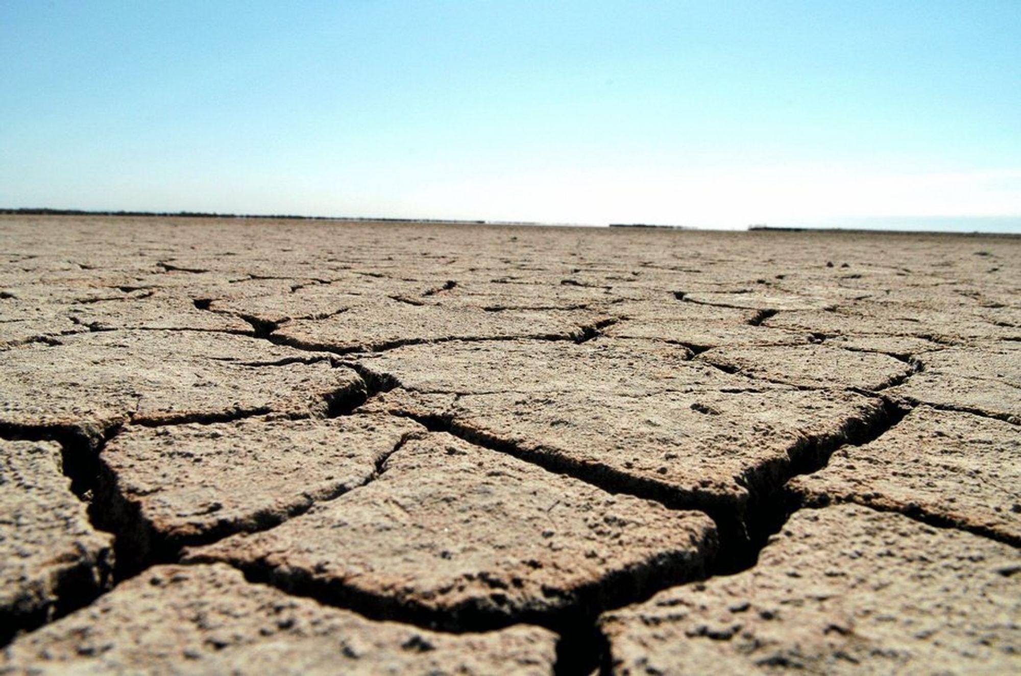 Klimaendringene forårsaker lidelser for hundrevis av millioner mennesker verden over, sier FNs generalsekretær Kofi Annan.
