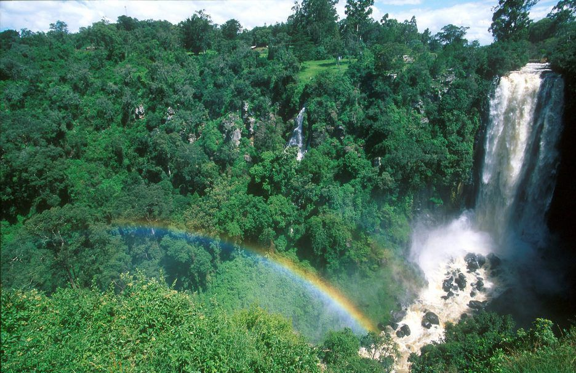 KAMP: Tropiske utviklingsland har ofte stort naturmangfold. Men det er rike industriland som har penger og teknologi til å utnytte dette genetiske materialet kommersielt.