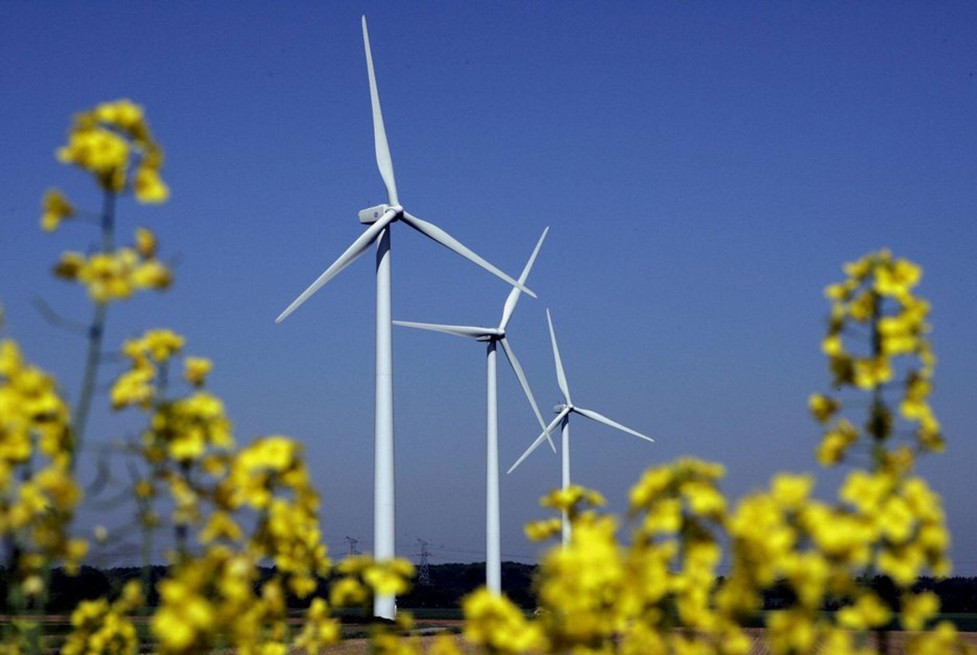 Vindturbiner er det beste for miljøet, viser studie. Biodrivstoff av begge typer er i mange tilfeller verre enn fossilt drivstoff.
