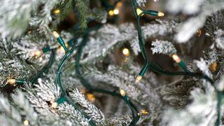 Julelys på helsa løs