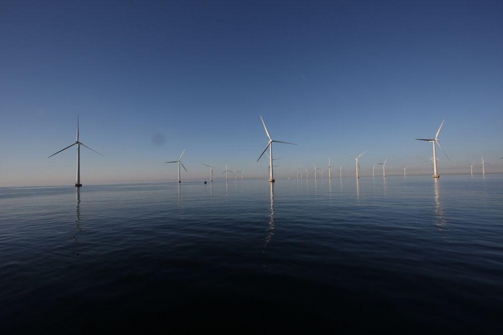 SVENSK HAVVIND: Dette er svenske Lillgrund, en havvindpark på 110 megawatt (MW). Denne var en av de største parkene i verden, men er allerede blitt liten. Verdens største vindpark ligger nå i USA og er på 781,5 MW. I Canada planlegges en vindpark på 4400 MW.