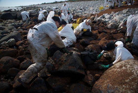 Strandrensking på Jomfruland etter Full City-forliset. World Wildlife Fund (WWF) har 300 utdannede medarbeidere som rykker ut ved oljesøl. De har utstyr og utdannelse til det harde og krevende arbeidet. Her jobber fastboende på Jomfruland side om side med WWF.