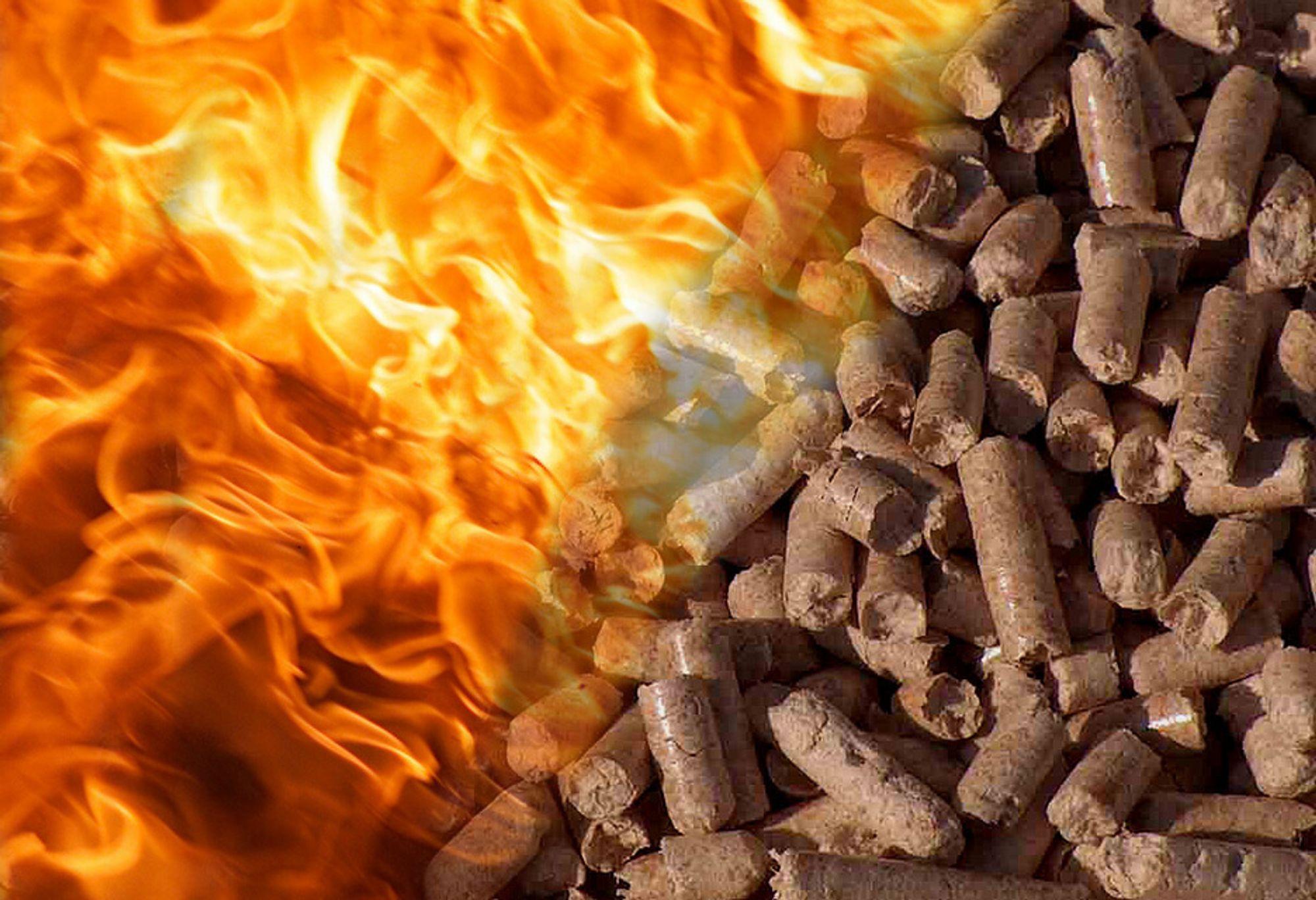 Pellets er en miljøvennlig varmeikilde, og prisen er ofte langt lavere enn elektrisitet. En pelletsovn må likevel regnes som en liten investering.