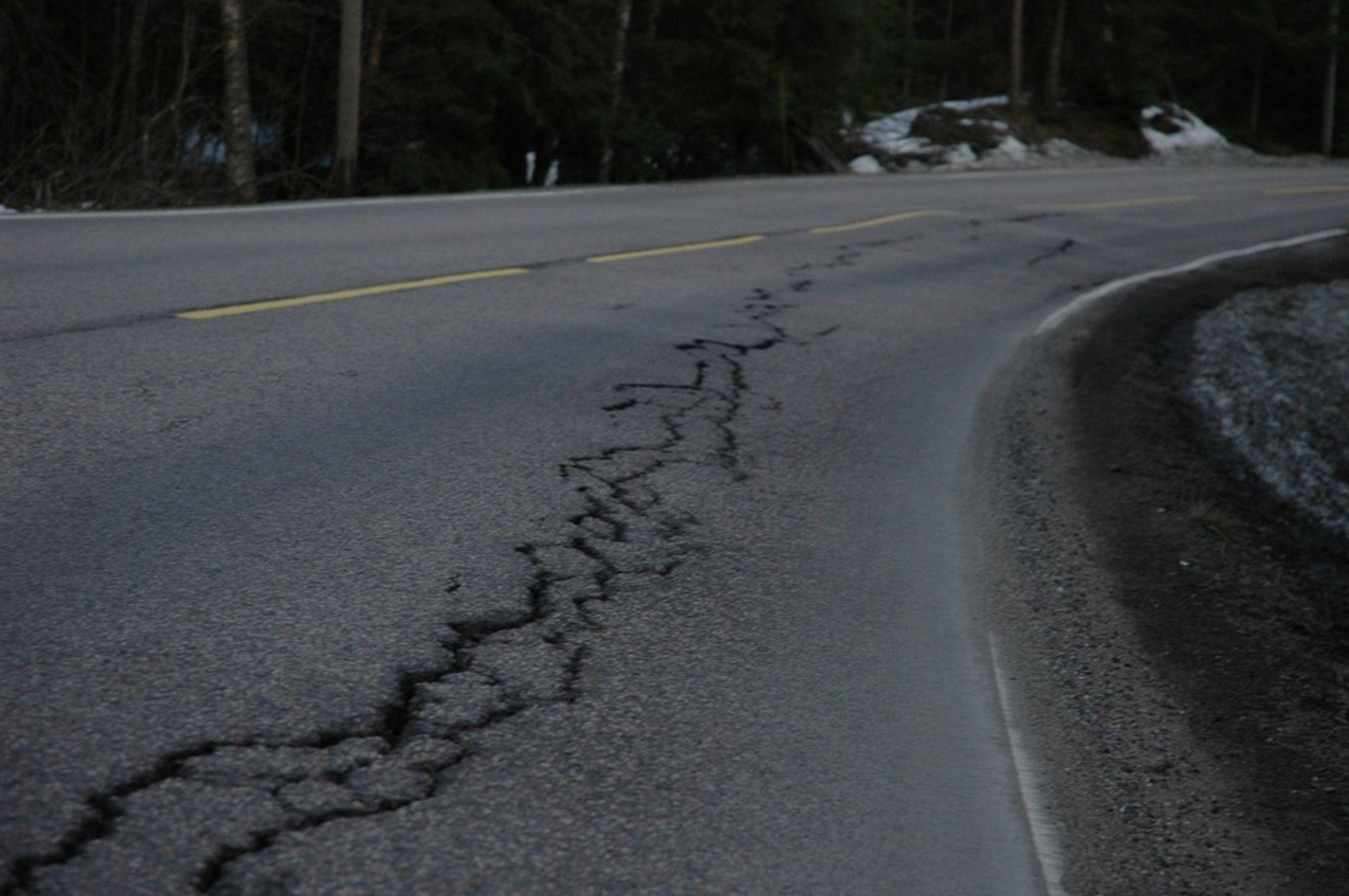 DÅRLIG VEDLIKEHOLD: 30 prosent av stamveiene er i dårlig stand. Det samme gjelder 53 prosent av fylkesveiene.