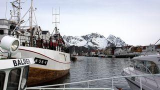Fant suksessbergarten utenfor Lofoten