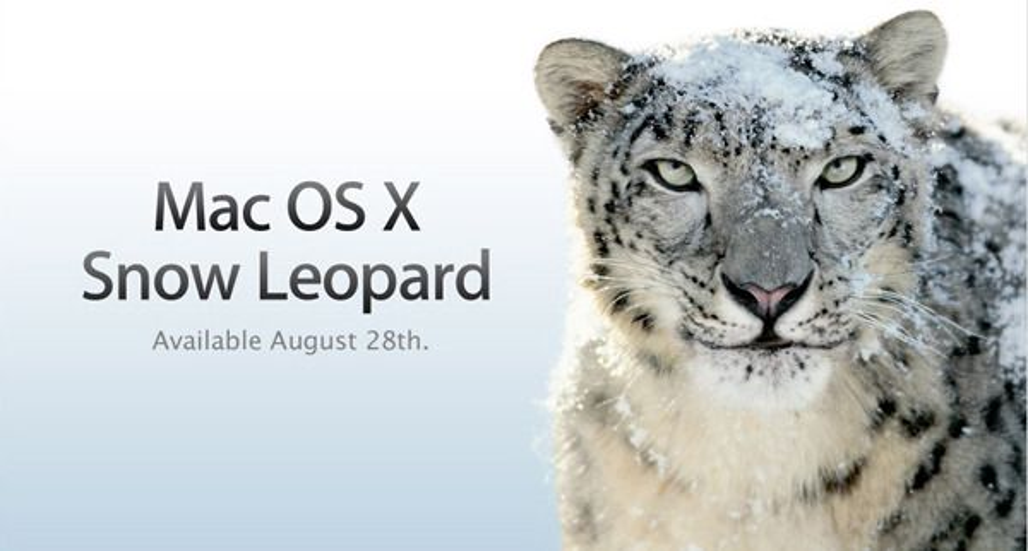 Den nye versjone.n av OS X, Snow Leopard, blir tilgjengelig kommende fredag