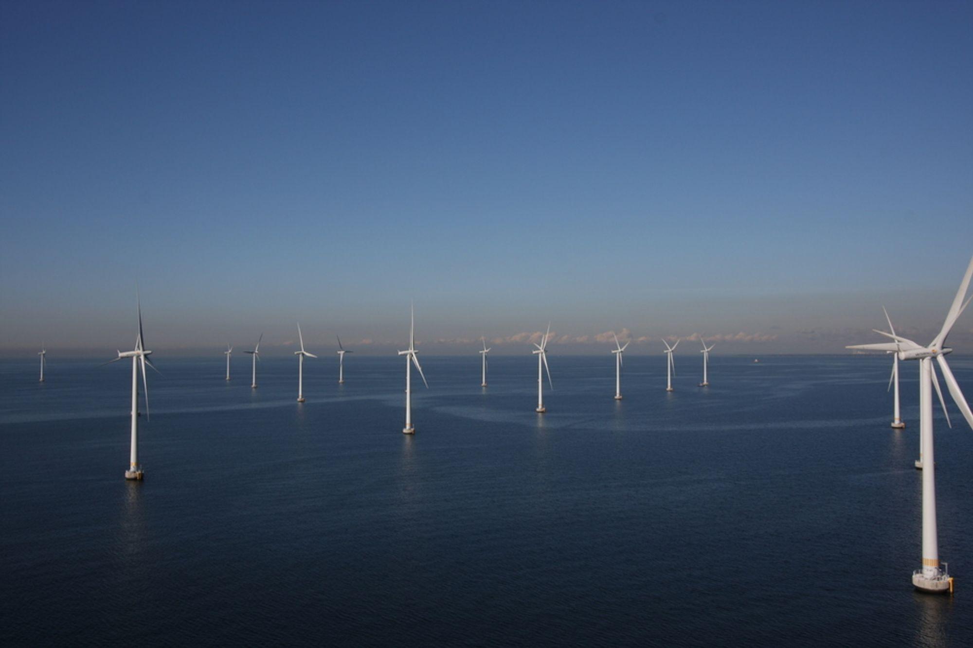 NORSK HAVVIND: Opptil 44 terawattimer strøm kan hentes ut fra norsk sokkel med vindmøller som disse på Lillgrund i Sverige. Det mener en direktoratsgruppe som har valgt ut 15 områder som er spesielt aktuelle for havvind utenfor norskekysten.