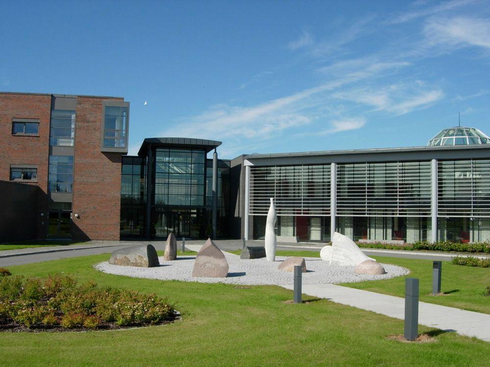 STIGER I GRADENE: Høgskolen i Bodø blir til Universitetet i Nordland fra nyttår.