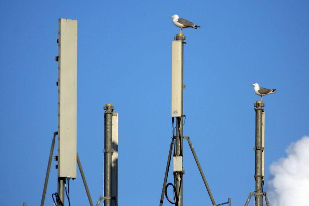 Utfall: Basestasjonene for mobiltelefoner i Molde sentrum har ikke backup-strøm og falt ut da strømmen gikk.