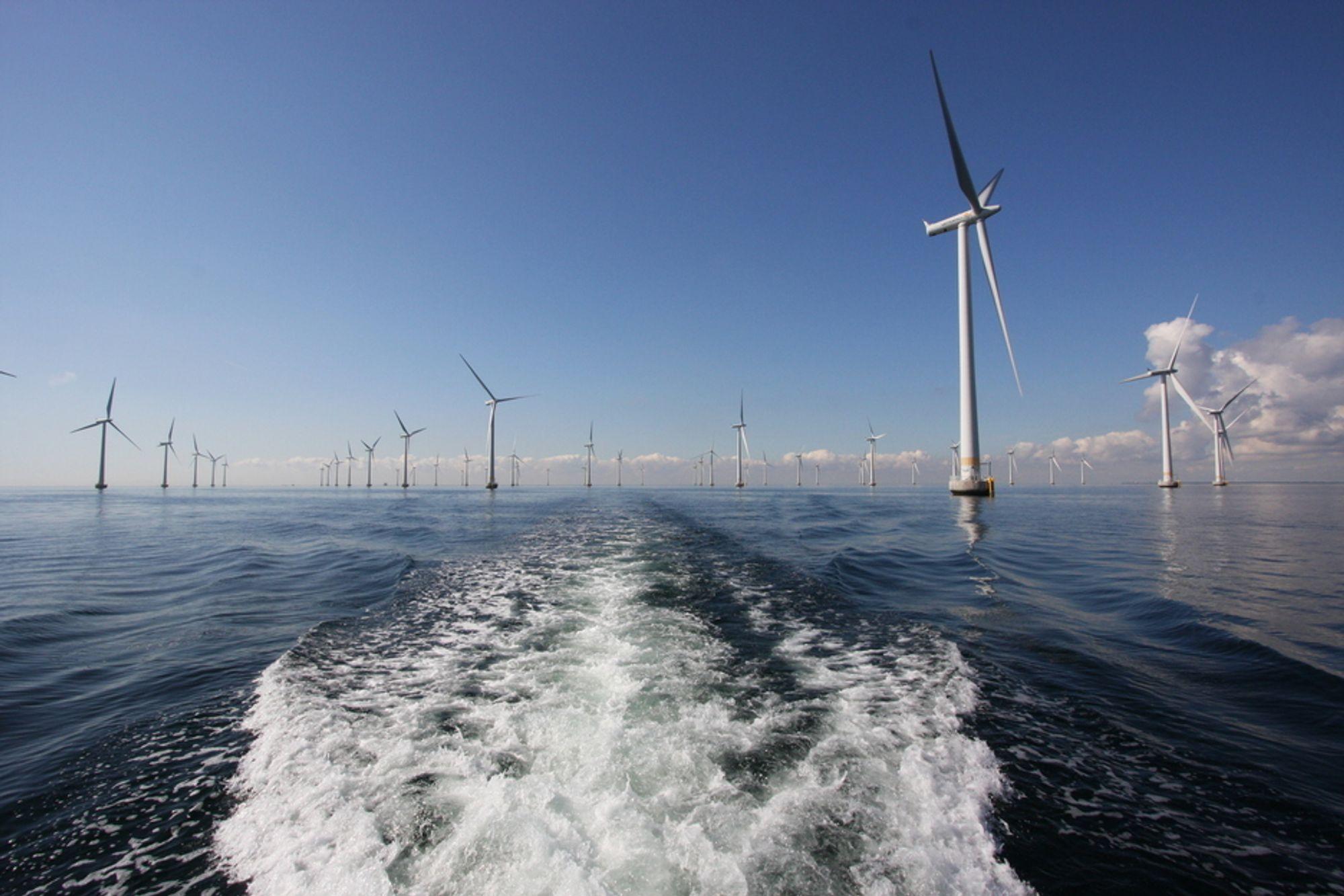 STORE MULIGHETER: I kjølvannet av teknologiutvikling innen havvind kan det ligge både penger og globale klimakutt, mener doktorgradsstipendiat Thomas Martinsen og professor Edgar Hertwich. Dette er den svenske havvindparken Lillgrund.
