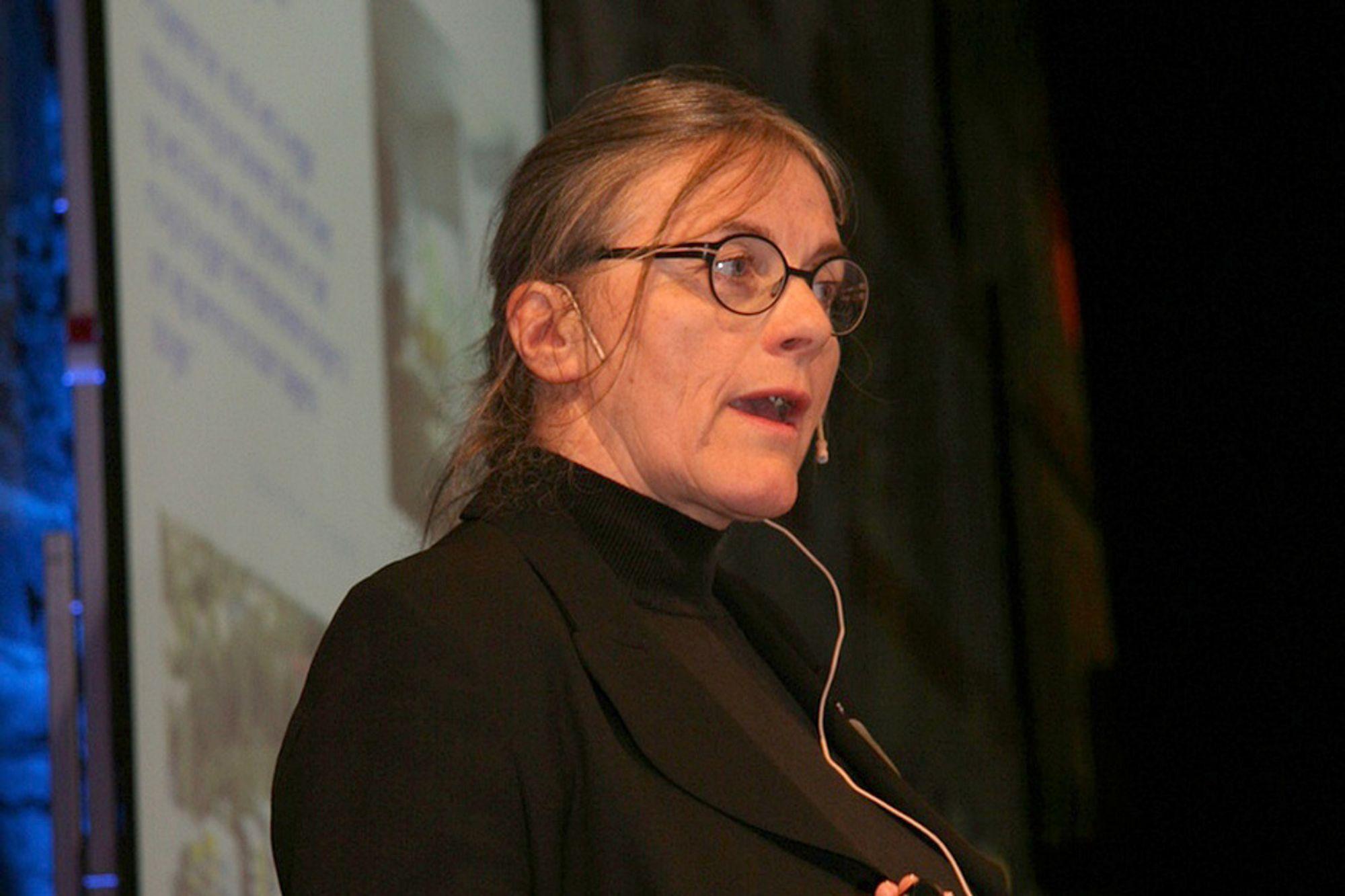 KRITISK: Professor Anne Grete Hestnes er kritisk til å pøse på med tekniske dingser uten å tenke helhet. - Ingeniører og arkitekter må bli flinkere til å arbeide sammen fra starten, sier hun.