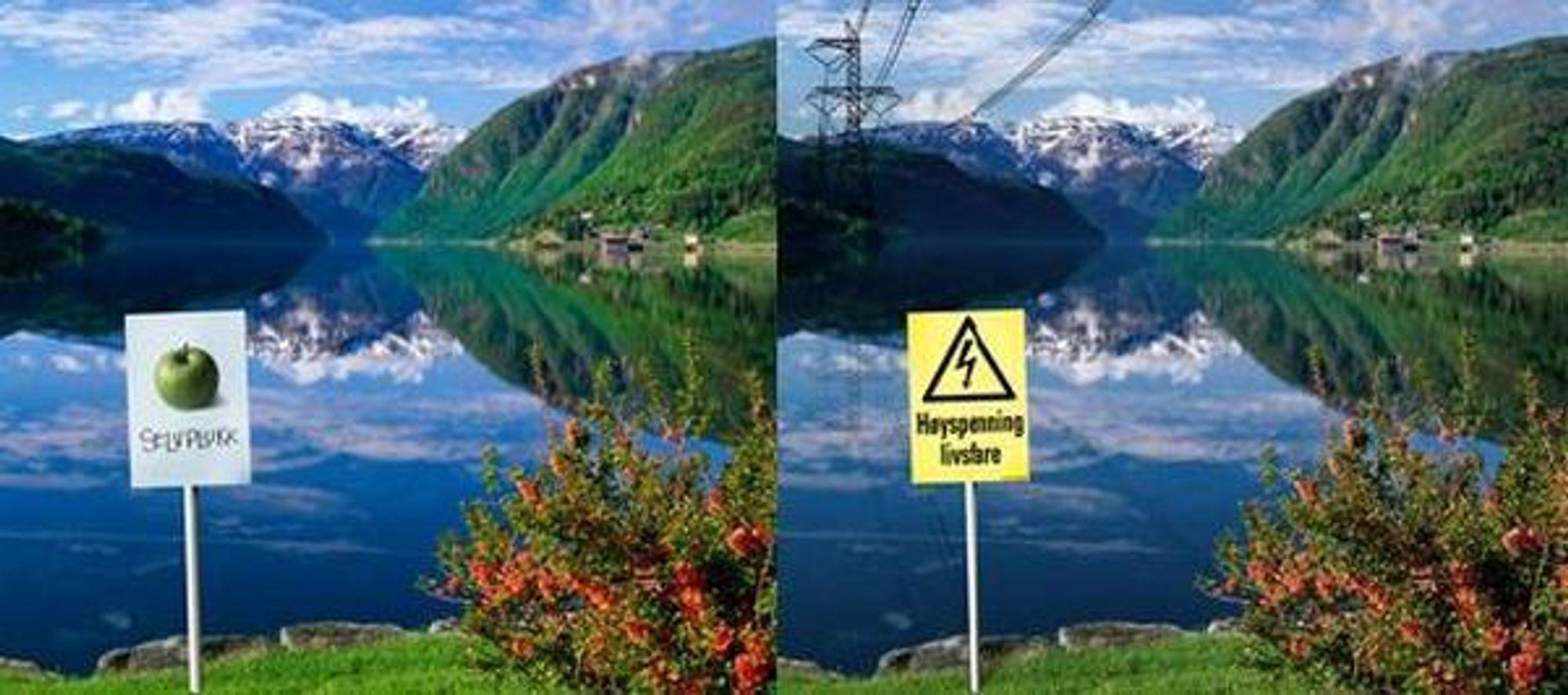 FRYKTER FJORDSPENN: Med manipulerte bilder som forestiller Hardangerfjorden med luftspenn vil organisasjonen Bevar Hardanger samle folks underskrifter.