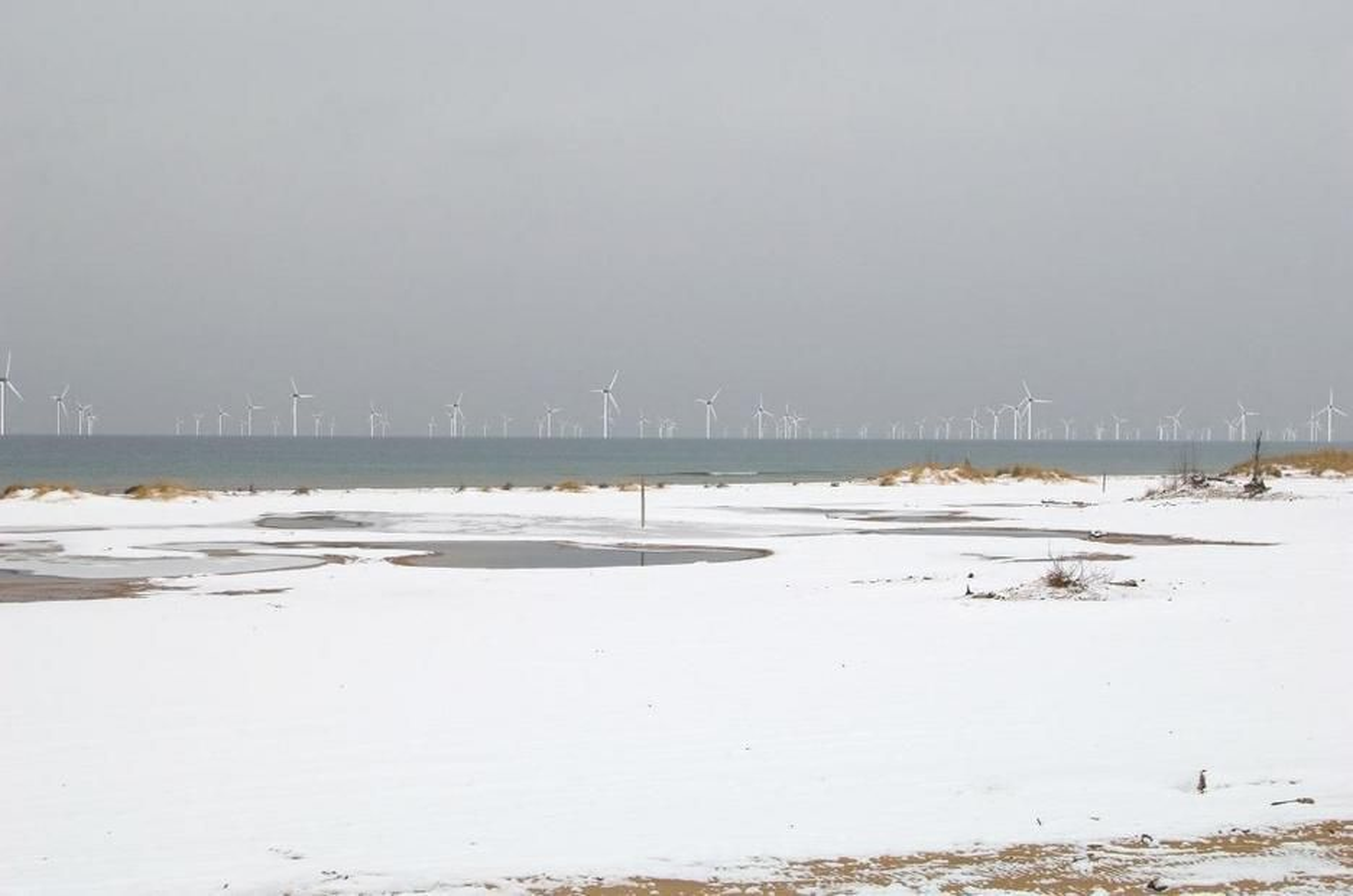 MØLLER I HORISONTEN: Michigan sliter med høy arbeidsledighet. Norske Havgul Wind Energy lokker med tusenvis av arbeidsplasser i vindindustrien med prosjektet Aegir på 1000 megawatt.