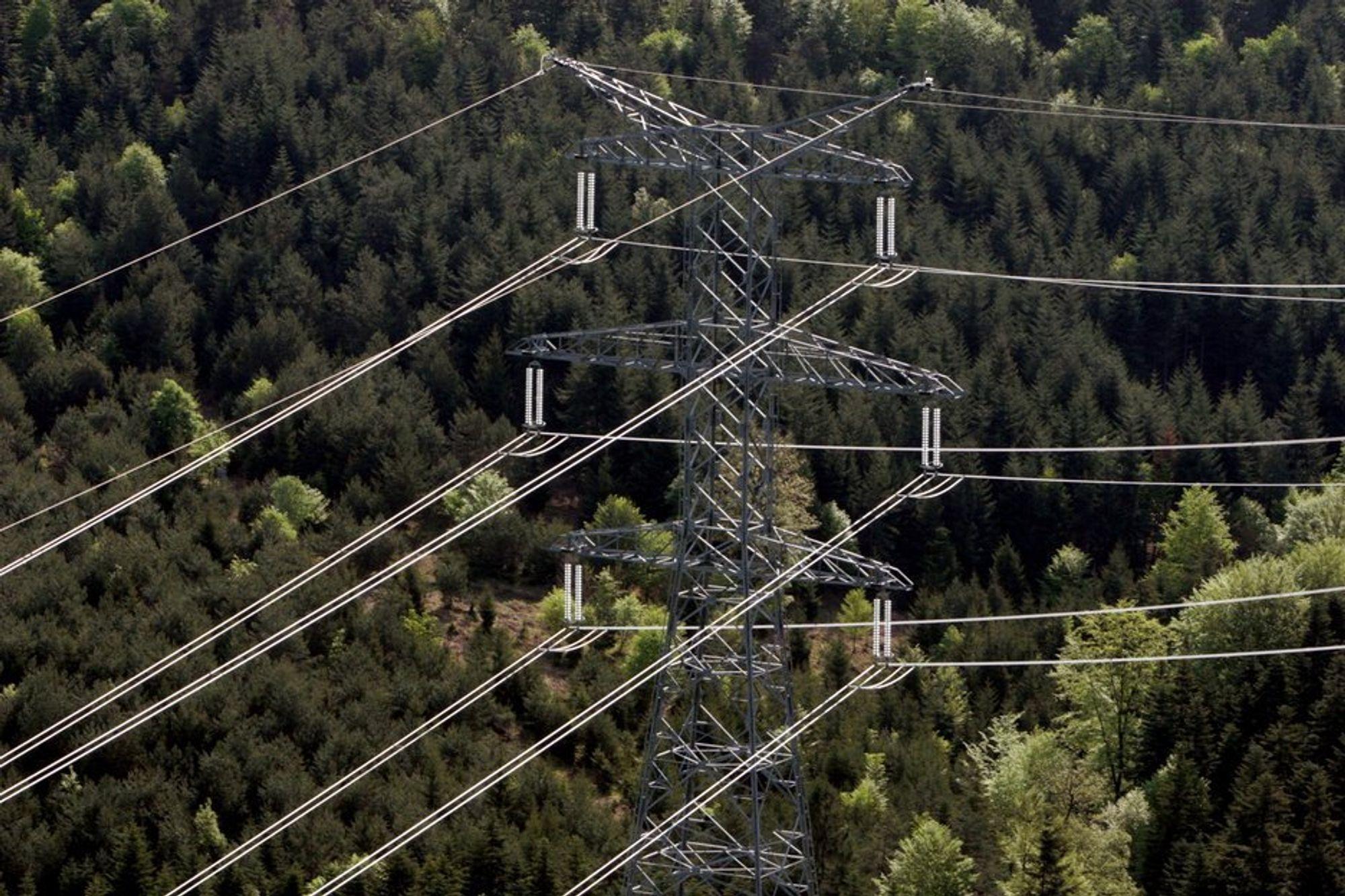 Mer enn 1000 kvadratkilometer urørt natur har gått tapt de siste årene. Energisektoren er den største synderen.