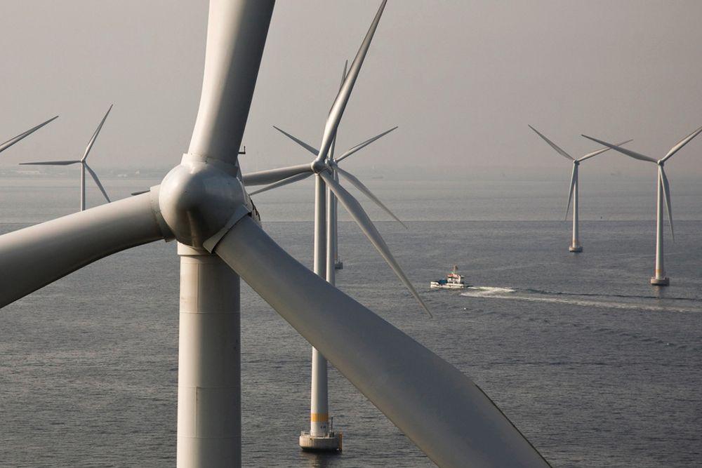 London Array-parken kan komme bli på 1000 MW.
