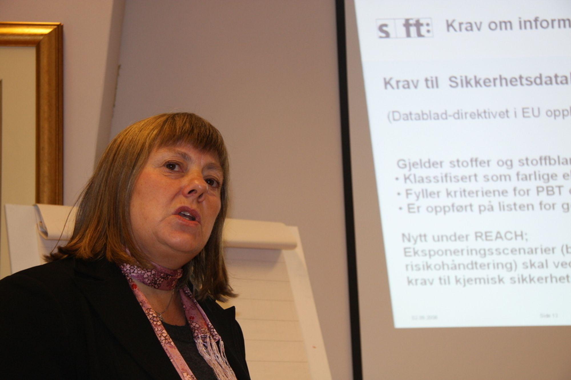 MED TIDSFRIST: Sjefingeniør Marit Kopangen i SFT reiser nå rundt og informerer om Reach.