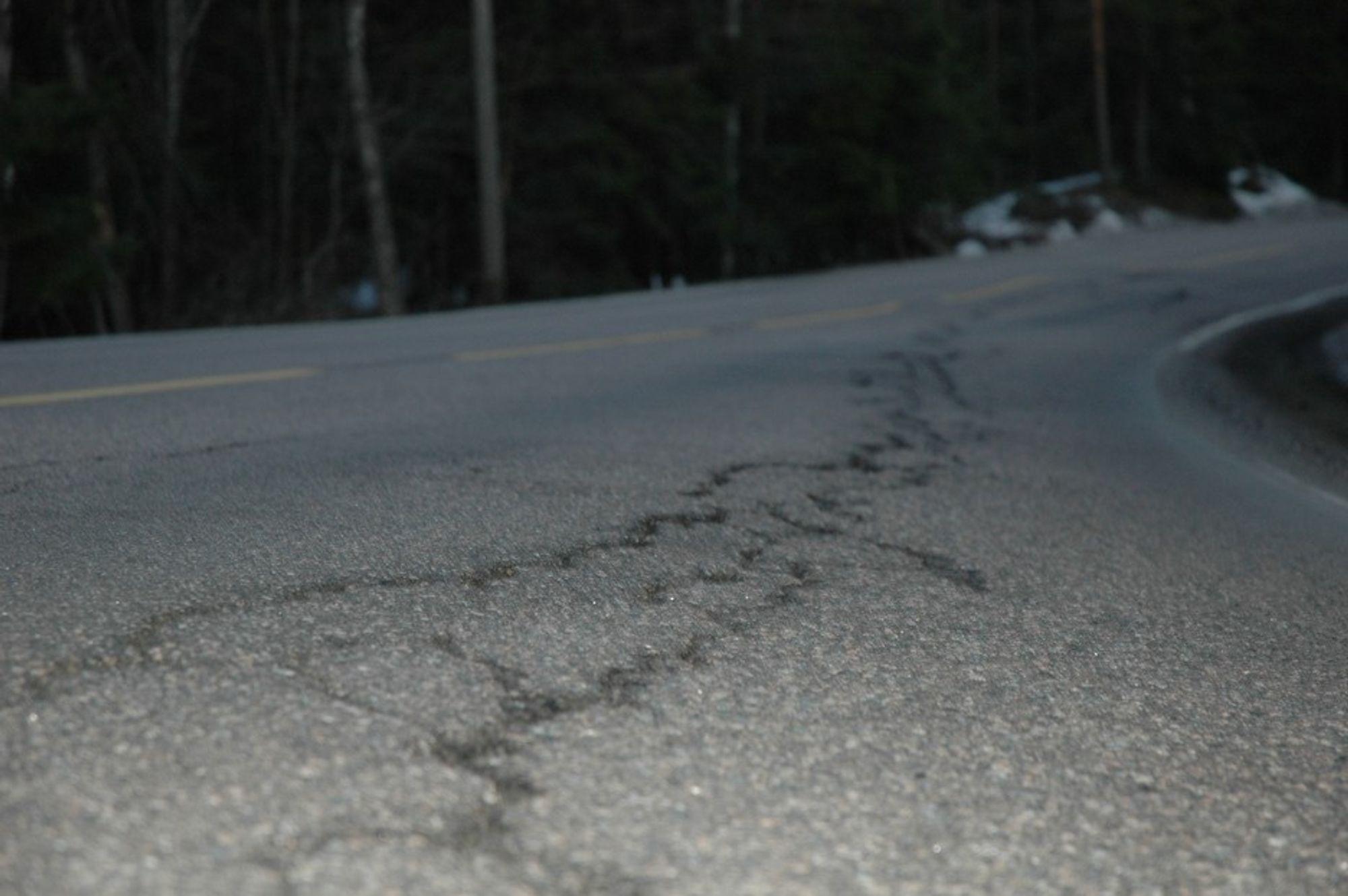"""Riksveiene sliter med etterslepet. De siste seks årene har over 400 kilometer med vei hvert år blitt """"nedgradert"""" til kategoriene """"dårlig"""" og """"svært dårlig""""."""