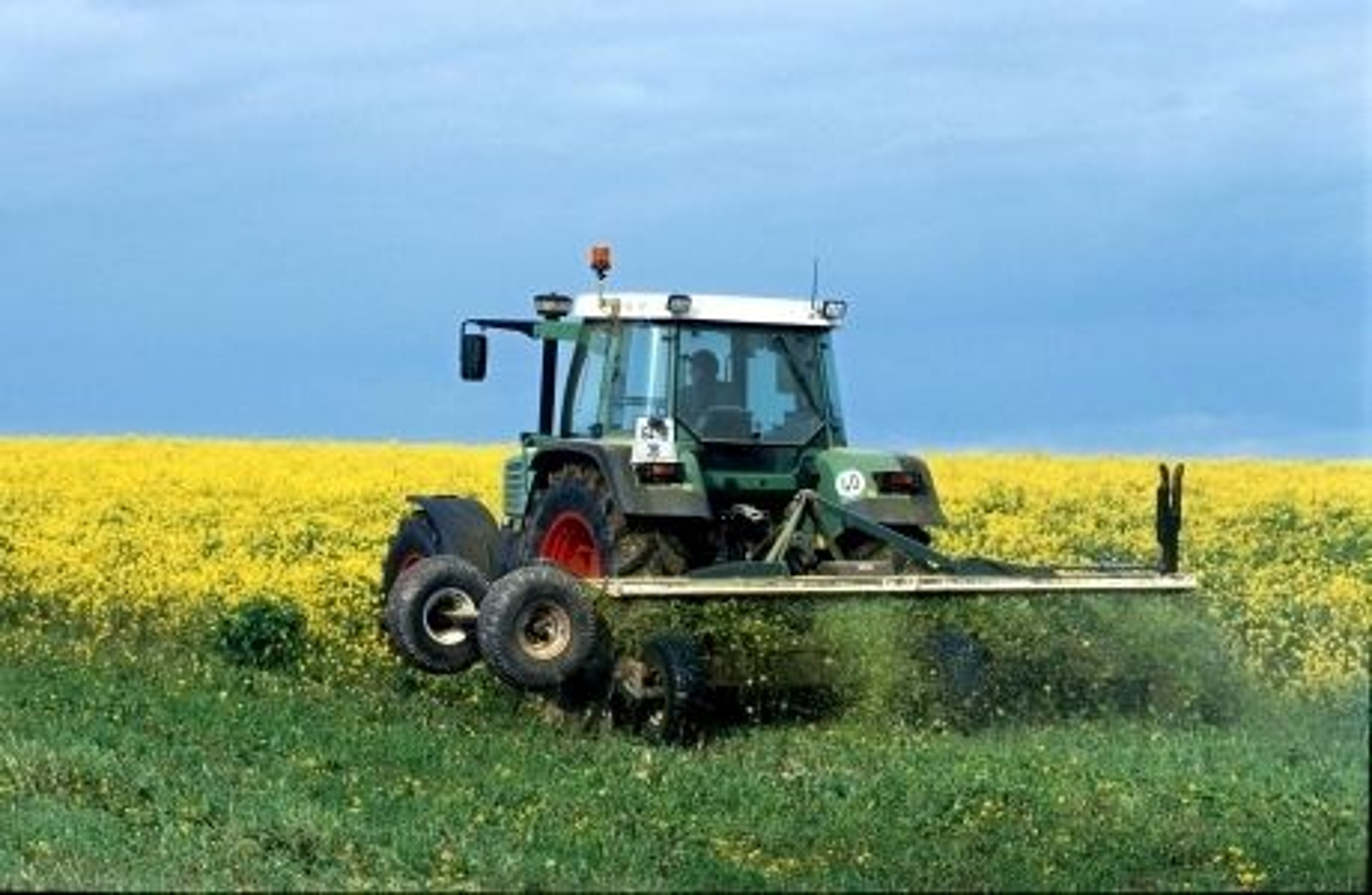 NY FABRIKK: Statoil skal produsere biodiesel i Lituauen, basert på vegetabilsk olje. Råvarene vil komme fra Baltikum, Ukraina, Hviterussland og Russland.